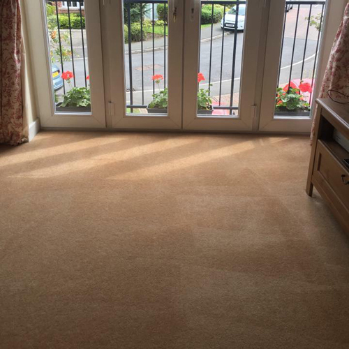 Cleanerscene » Carpet Cleaning Services in Nantwich » After